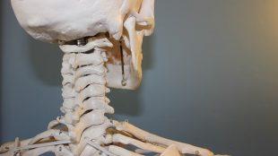 kiropraktor københavn hjælper på dine smerter
