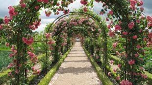 Anlægsgartner Roskilde gav mig en ny have
